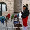http://www.dalmatia-pictures.com/wp-content/uploads/2012/02/005_Dubrovnik.jpg