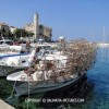 http://www.dalmatia-pictures.com/wp-content/uploads/2012/03/Komiza_003.jpg