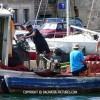 http://www.dalmatia-pictures.com/wp-content/uploads/2012/03/sibenik_ribolov_008.jpg