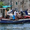 http://www.dalmatia-pictures.com/wp-content/uploads/2012/03/sibenik_ribolov_010.jpg