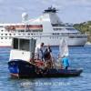 http://www.dalmatia-pictures.com/wp-content/uploads/2012/03/sibenik_ribolov_011.jpg