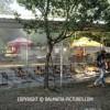 http://www.dalmatia-pictures.com/wp-content/uploads/2012/05/bikijada_radosic_004.jpg