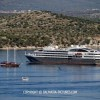 http://www.dalmatia-pictures.com/wp-content/uploads/2012/07/l_austral_014.jpg