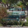 http://www.dalmatia-pictures.com/wp-content/uploads/2012/08/jadrija_90_godina_023.jpg