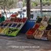 http://www.dalmatia-pictures.com/wp-content/uploads/2012/08/jadrija_90_godina_029.jpg