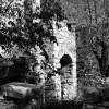 http://www.dalmatia-pictures.com/wp-content/uploads/2012/09/zirje_009.jpg