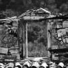 http://www.dalmatia-pictures.com/wp-content/uploads/2012/09/zirje_010.jpg