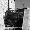 http://www.dalmatia-pictures.com/wp-content/uploads/2012/09/zirje_012.jpg